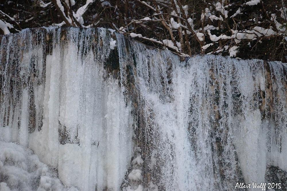 Un hérisson  pas trop  gelé - Part 2