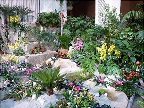 Orchidees-Menton-2011--6-.JPG