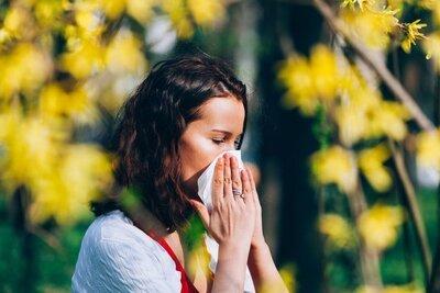 C'est le retour des allergies aux pollens. Bienvenue à l'allergie au bouleau