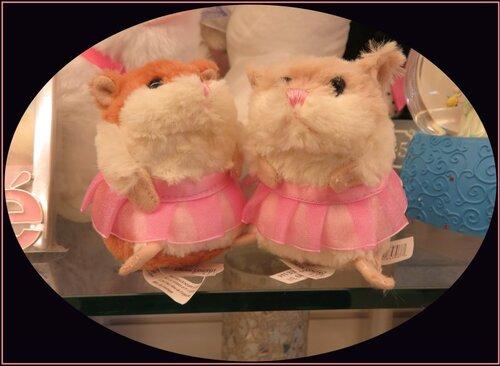 Ce petit couple de Hamsters....