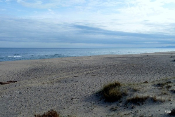 y03---La-plage.JPG