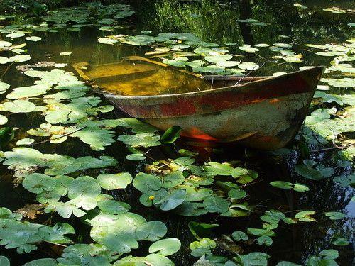 Petites barques