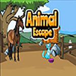Solution Animal Escape