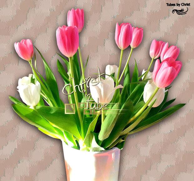 Bouquet tulipes.