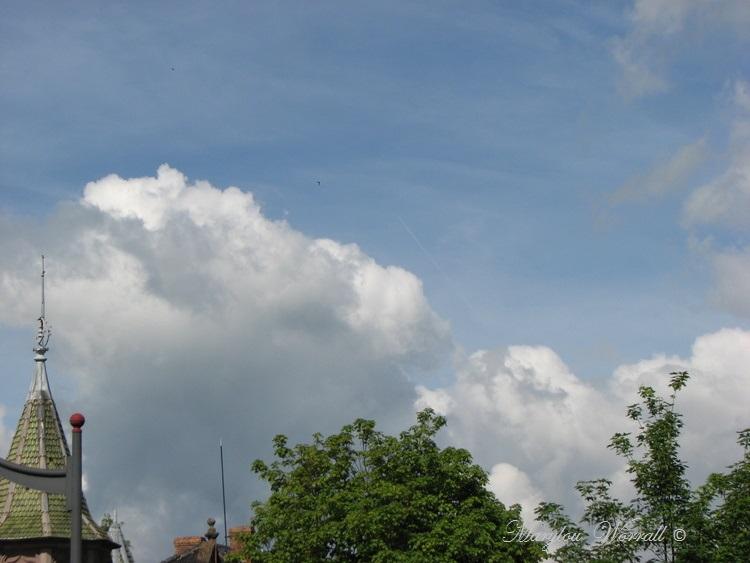 Ciel d'Alsace 317