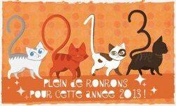 LES COTISATIONS 2013 SONT OUVERTES !!!