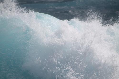 De retour pour la pointe des châteaux, saison des baleines