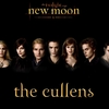 New-Moon-alice-cullen-7286330-1024-768.jpg