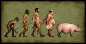 evolution-porcherie.jpg