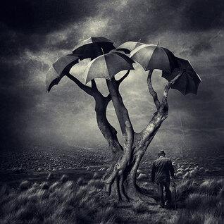 L'arbre surréaliste