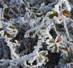 L'Ardèche en hiver...