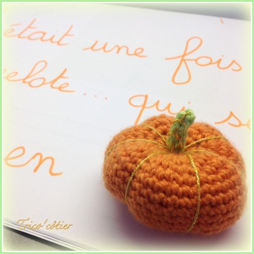 Serial Crocheteuses n°189