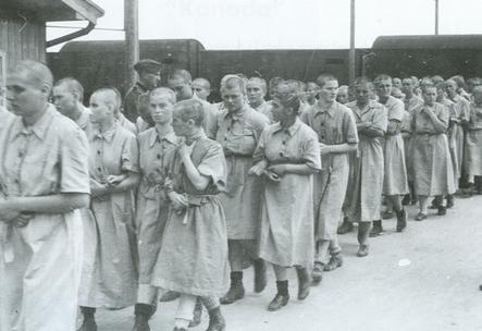 Arrestation et déportation vers les camps de concentration