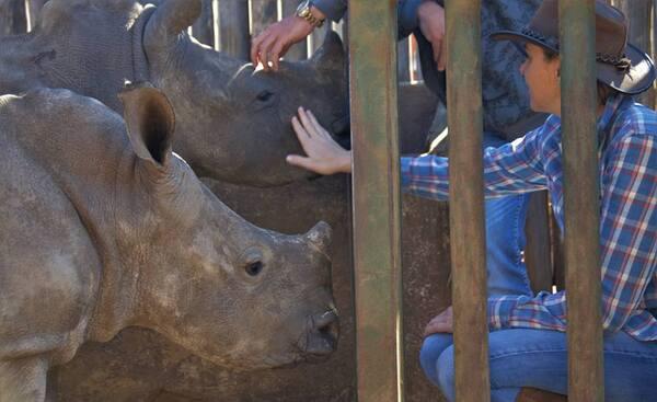 Charlène et les bébés rinos - Afrique du Sud