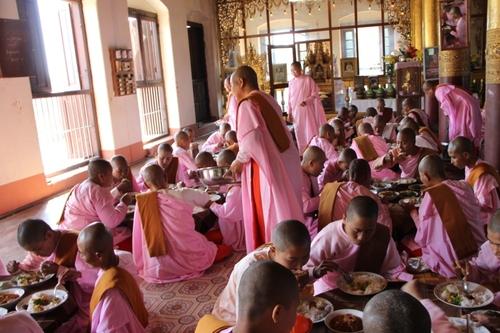 Moines et nonnes en Birmanie
