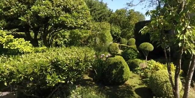 Jardin Jardinier : Entre Charmilles et Buis