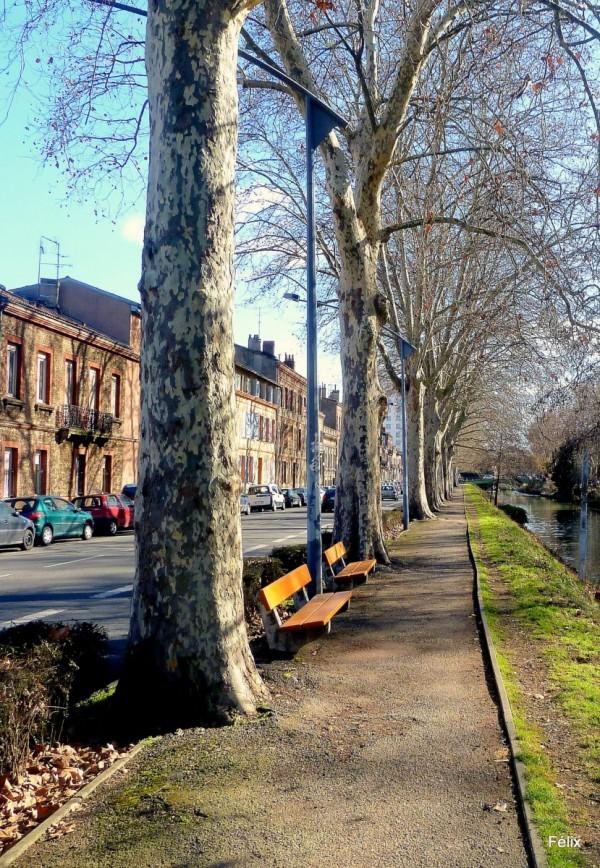 s01 - Allées Canal