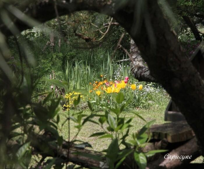 jardin-de-mai 5020