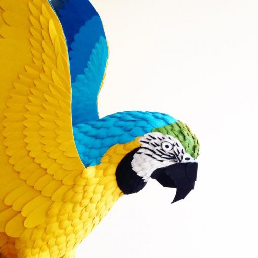 Diana Beltran Herrera-birds-paper-numerik6.jpg