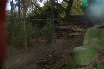 dierenpark amersfoort d50 2011 133