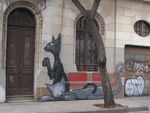 03 - Des chats sur les murs encore