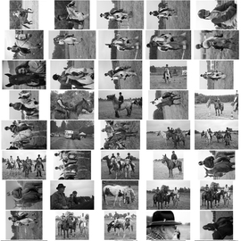 Planche Contact 14