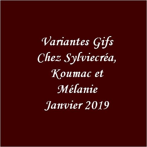 Variantes Gifs de Janvier 2019