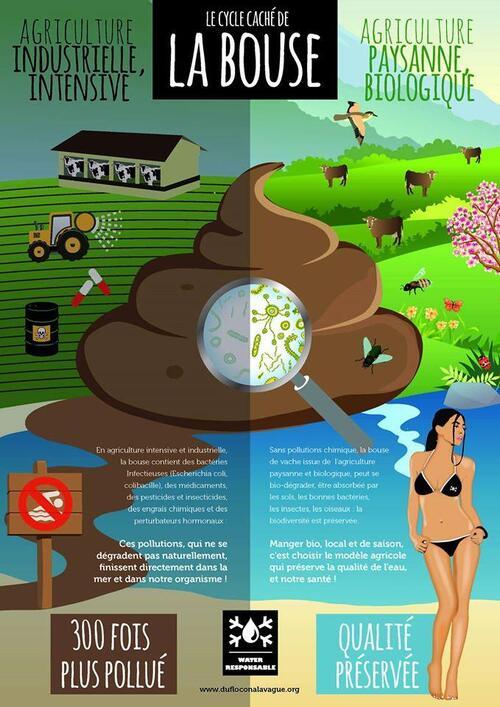 Pour une alimentation locale responsable. Contre la ferme des #1000vaches : comprendre en 1 image !
