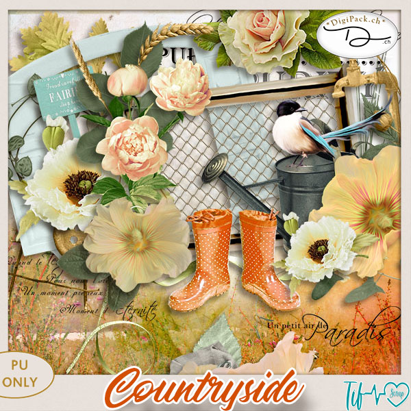 Contryside {element}