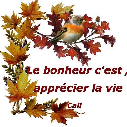 Oiseaux en automne