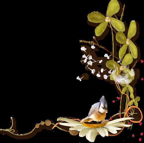 Ornements Floraux Série 33