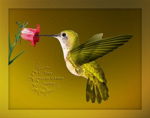 Oiseaux (01 à 12)