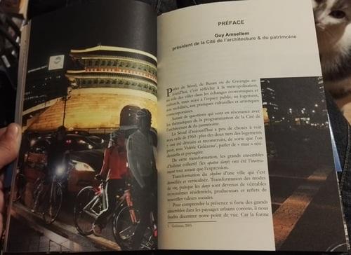 """Urbanités coréennes : Un """"spectateur"""" des villes sud-coréennes - Valérie Gelézaeu & Benjamin Joinau"""