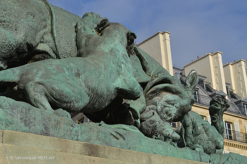 Jardin des Tuileries : Rhinocéros attaqué par un tigre de A. N. CAÏN