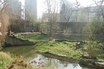 zoo cologne d50 2012 068