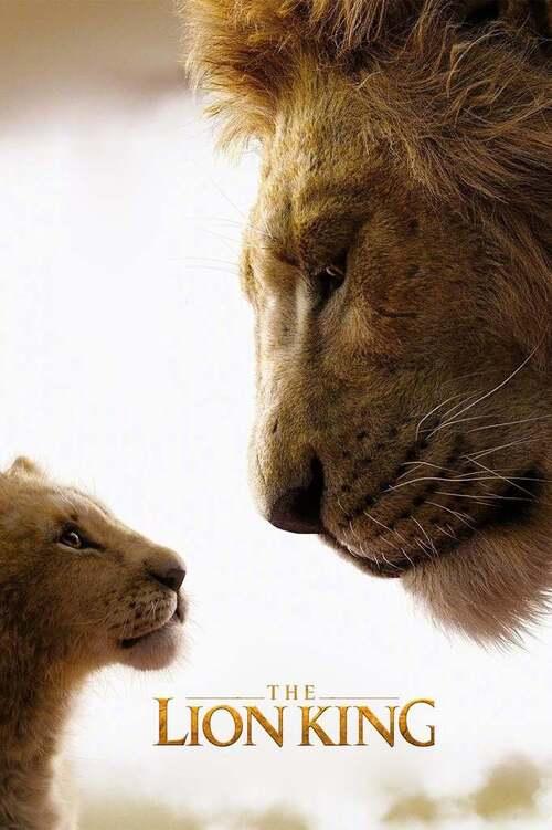 """Bonsoir a l'honneur : """" Le Roi lion """""""