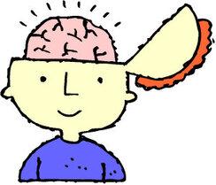 Comment bien apprendre ? Les profils d'apprentissage