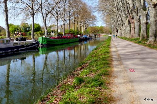 Promenade au Canal du Midi