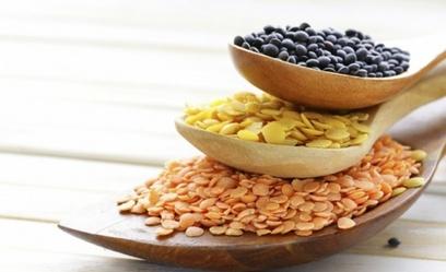 graines-cereales-z-500x305