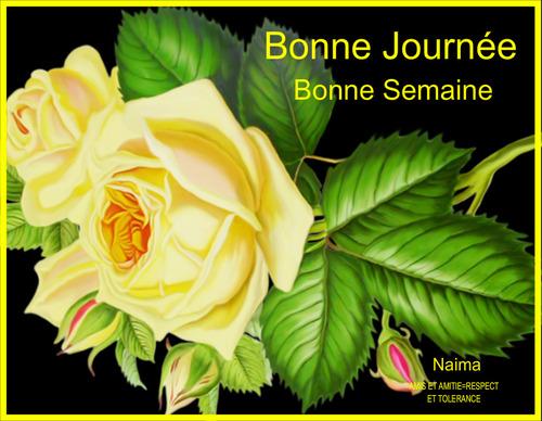 BONNE JOURNEE  -