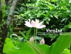 Vivre Zen, Espace Bien Être Réunion