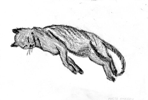 Peintures et dessins 2008