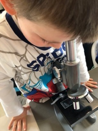 Le microscope de Julien