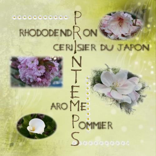 printemps et fleurs