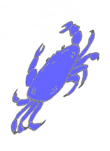Lecrabe Bleu