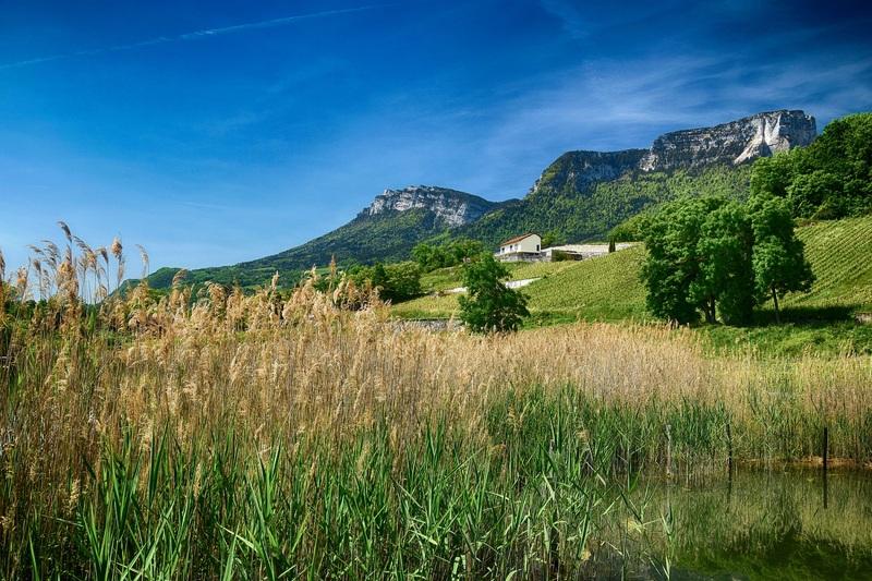 2016.05.21 Lac de St-André (Savoie)