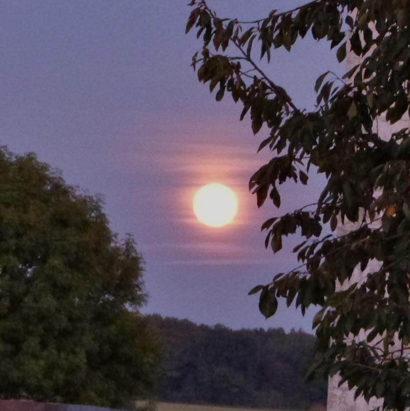 Quand la lune apparait...lever de lune - septembre 2014
