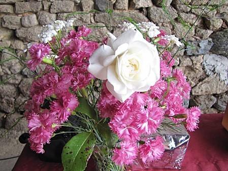 fleurs de chez ma grand mére (1)