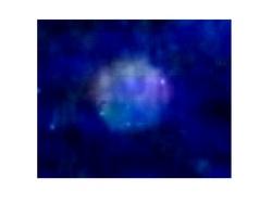 orbes zoomées et retravaillées , 4220029