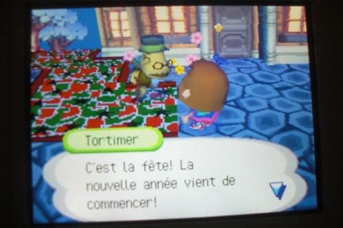 Ma ville décorée à Noël et le jour de l'an 2009